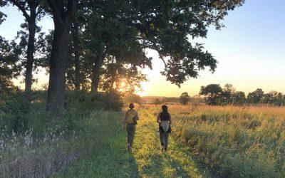 Pretty Prairie Paths